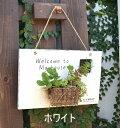 アンティーク風 ワンポケットサイン ホワイト ブラウン azi-azi アジアジ プランター ガーデン雑貨