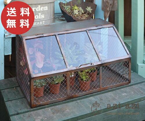 ガラスコンテナ AZ-1050 アンティーク風 ガーデンコンテナ ガーデンボックス ガラス 硝子【送料無料】