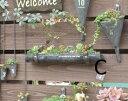 アンティーク風 ティン樋プランターC 壁掛けプランター ガーデン 雑貨 ハンギング ポット ガーデニング雑貨