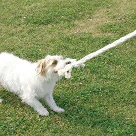 ecololo オーガニックロープS犬おもちゃ ロープ デンタル
