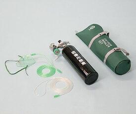 携帯用酸素吸入器 OX-200DX 60分用(流量調整式) 1式【返品不可】