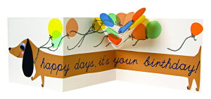 Meri Meri メリメリ ソーセージドッグ 折り畳み式 バースデーカード