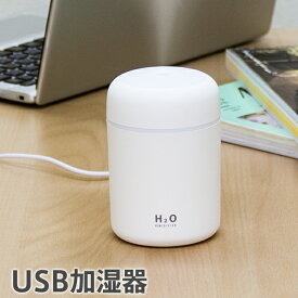 USB加湿器 次亜塩素酸水対応 除菌 消臭 噴霧器 車載 卓上 携帯 オフィス 寝室にも ディフューザー