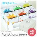 マジッククリスタル 贈答用 6個セット Magic Crystal 10日で育つ不思議なクリスタル 手作りキット