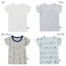 [mikihouse][ミキハウス]ボーダー&イカリ&車 半袖Tシャツ【肌着】(80cm-140cm)