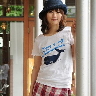 T shirt short sleeve design print HELLO! Cat POS