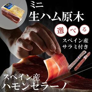 【送料無料】スペイン産 ミニ生ハム原木 ハモンセラーノ 選べるサラミ付きセット