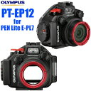 OLYMPUS オリンパス 防水プロテクター「PT-EP12」(PEN Lite E-PL7用)【送料無料】【02P16Jul17】