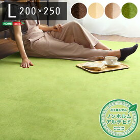 高密度フランネルマイクロファイバー ラグマット L 200 250cm 洗えるラグマット ナルトレアインテリア 寝具 収納 カーペット ラグ 丸洗い オシャレ 絨毯 オールシーズン ホットカーペット すべり止め 人気 ふわふわ 長方形 ブラウン グリーン