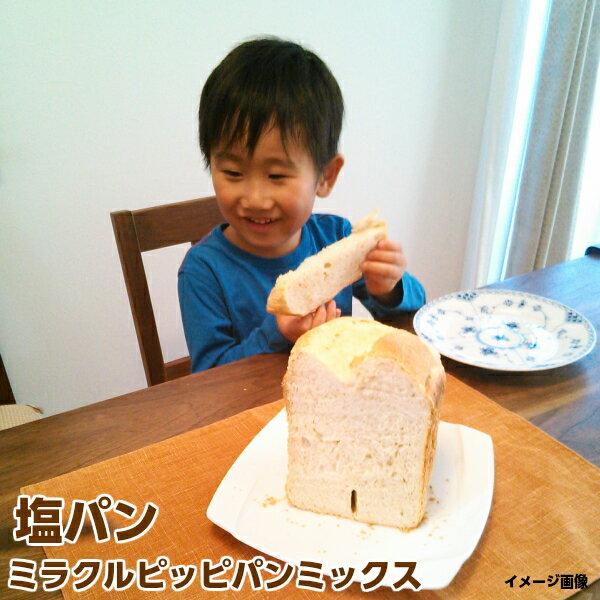 ホームベーカリー用パンミックス オーブン フライパン焼きにも使える食パンミックス【ハード系】【手作りパン材料】