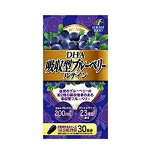 DHA吸収型ブルーベリールテイン ルテイン ブルーベリー アサイー 眼の疲労感 サプリ 45g(500mg×90粒)【ネコポス対応】