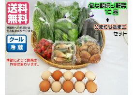 【野菜セット】旬な朝採り野菜10品&朝採り ひまわりたまご10個セット