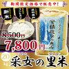 【予約】采女の里米20kg福島県産コシヒカリ