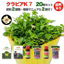 【レビュー特典あり】 クラピア K7 新品種 20株 すくすくセット 完全植栽マニュアル付き 苗20ポット 肥料2種(有機一…