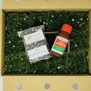 クラピア K7 新品種 20株 すくすくセット 完全植栽マニュアル付き 苗20ポット 肥料2種(有機一発肥料、メネデール) …