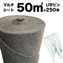 50平米分セット クラピア専用マルチシート (50m2)+Jピン(250本) クラピア 植栽用 吸水性 透水性 アップ