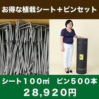 送料無料お得な植栽シート(100m2)+ピンのセット(500本)セット防草シートアンカーピン