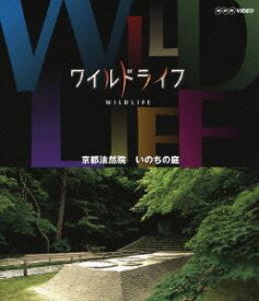 [送料無料] ワイルドライフ 京都法然院 いのちの庭 [Blu-ray]
