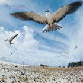高中正義 / SEYCHELLES(SHM-CD) [CD]