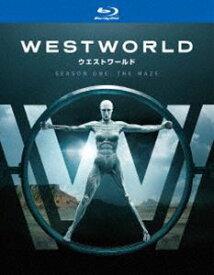 [送料無料] ウエストワールド<ファースト・シーズン> ブルーレイ コンプリート・ボックス(初回限定生産) [Blu-ray]