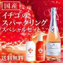 スパークリングワイン ミガキイチゴ・ムスー ミガキイチゴ・カネット スペシャル メッセージ