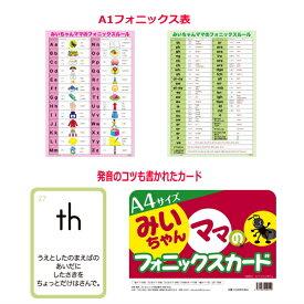 大判(A4)フォニックスフラッシュカードとA1ポスターサイズフォニックスルール表(発音記号入り)のお得なセット。