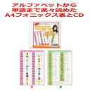 A4フォニックスルール表とCDのお得な2点セット。発音記号入り。子供、小学生、中学生におすすめ!