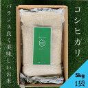〈無洗米〉【送料無料】コシヒカリ5kg(1袋)★おうち時間生活応援企画★
