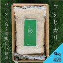 〈無洗米〉【送料無料】コシヒカリ5kg(4袋)★おうち時間生活応援企画★