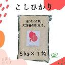 コシヒカリ 無洗米 5kg (1袋) 令和2年産 真空5kg お米 福島 こしひかり JGAP FGAP取得 認証農場 真空パック 5キロ 贈…