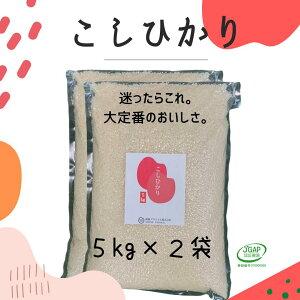コシヒカリ 無洗米 5kg (2袋) 令和2年産 真空5kg お米 福島 こしひかり JGAP FGAP取得 認証農場 真空パック 5キロ 贈り物 備蓄 非常食 白米 10kg