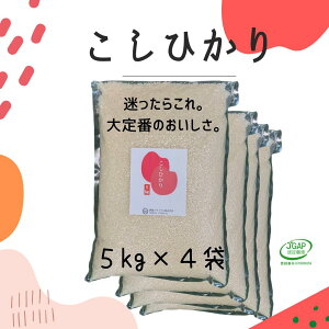 コシヒカリ 無洗米 5kg (4袋) 令和2年産 真空5kg お米 福島 こしひかり JGAP FGAP取得 認証農場 真空パック 5キロ 贈り物 備蓄 非常食 送料無料