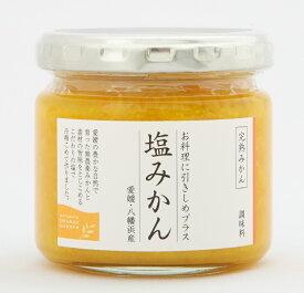 愛媛の新しい調味料 お料理に引き締めプラス 塩みかん (完熟みかん) 150g 12本セット