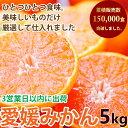 みかん 5kg 訳あり 送料無料 ブランド 愛媛県西宇和地区八幡浜市産 ご家庭用 ご褒美 フルーツ