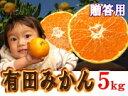 ◆創業120年農家直送◆ ギフト用最高級有田みかん Lサイズ 5kg 味よし!見た目よし! 送料無料 ギフト対応可