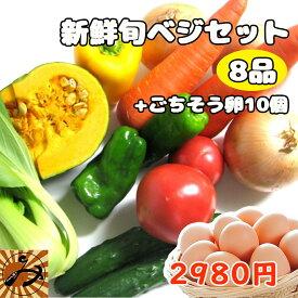 野菜セット 野菜 8品 + 卵 10個 送料無料 みかん横丁 契約農家の美味しい野菜 減農薬 新鮮 旬ベジセット