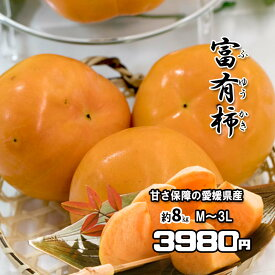 柿 かき 富有柿 ふゆかき 約8kg 愛媛県産 ご家庭用 送料無料