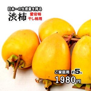 柿 かき 渋柿 干し柿用 愛宕柿 愛媛県産 約5kg 送料無料