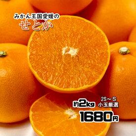 せとか 訳あり 箱買い 柑橘の大トロ 愛媛県産 約 2kg 2S〜S 小玉厳選 いずれか