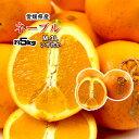 ネーブル 訳あり 箱買い 無農薬 ネーブルオレンジ オレンジ 愛媛県産 5kg 送料無料