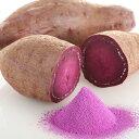 国産野菜パウダー 紫芋パウダー 100g入。加熱せずに食べれる野菜パウダー。ハロウィンで人気【アレルゲンフリー・国産100%・殺菌済・無添加・無着色・メーカー直売・野菜粉末】