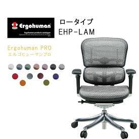 Ergohuman PRO エルゴヒューマンプロ ロータイプ EHP-LAM【QSM-260】  t001-【JG】