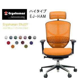 Ergohuman Basic エルゴヒューマンエンジョイ ハイタイプ EJ-HAM【QSM-260】  t001-【JG】