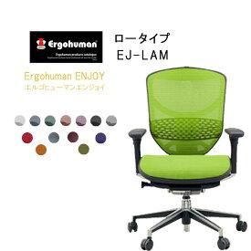 Ergohuman Basic エルゴヒューマンエンジョイ ロータイプ EJ-LAM【QSM-260】  t001-【JG】