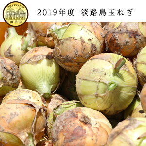 2019年淡路島産玉ねぎ5kg
