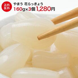 花らっきょう 3袋セット 送料無料 【漬物/漬け物/おつけもの/らっきょう/ラッキョウ/甘酢/つけあわせ/付け合わせ】