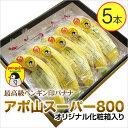 【入荷中】アポ山スーパー800【最高級ペンギン印バナナ5本】フィリピンのアポ山で栽培された最高級高原栽培バナナ※御注文順に発送致します