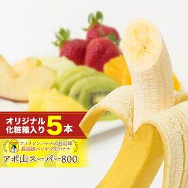 アポ山スーパー800【最高級ペンギン印バナナ5本】フィリピンのアポ山で栽培された最高級高原栽培バナナ※御注文順に発送致します