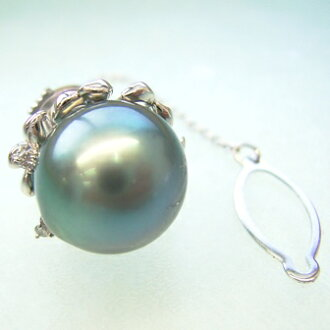 PT 大溪地黑珍珠蝴蝶領帶釘 okj-5042 (黑色珍珠從珍珠領帶男式白金大溪地)