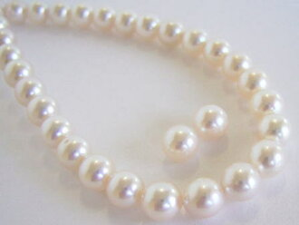 Akoya pearl necklace & earring (earring) two-point set swk-5259 (Oh Akoya pearl Japanese Pearl Oh here or this Pearl Akoya this Pearl this Pearl Pearl).